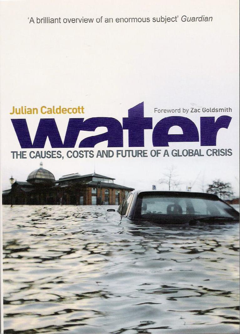 Water: causes, costs and future of a global crisis